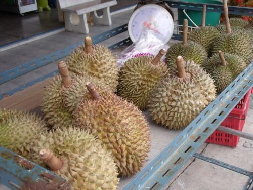 Durianas pardavime