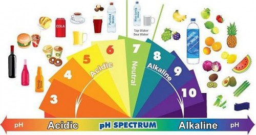 Maisto produktų pH spektras – nuo rūgštingų iki šarminių